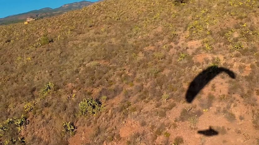 Tenerife 2018 paragliding